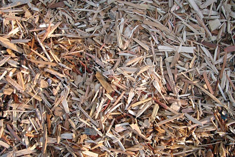 woodfibre